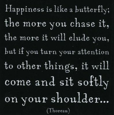 You-Cant-Pursue-Happiness-You-Have-To-Just-BE-Happy