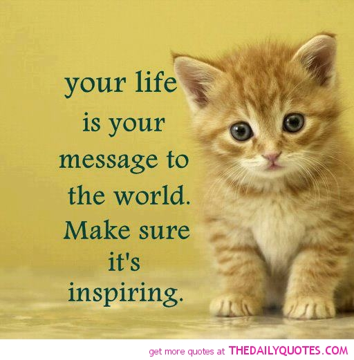 cute-kitten-pic-life-inspiring-quote-nice-sweet-pictures-sayings